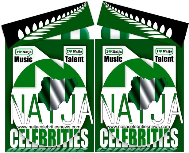 NAIJA CELEBRITIES LOGO by VKB MUSIC ENT